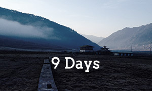 Designed for clients who would like to experience Bhutan a little more in-depth. The package includes the 7 day package with the addition of a visit to a 19th century monastary in Gangtey, a farmhouse stay and exploring the neighbouring village of Phobjikha, followed by a 5 hour hike through the lush natural forest back to Punakha the next day.